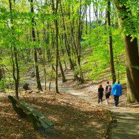 Mindful & Fit Walk - Park Klarenbeek